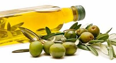 oliva mini
